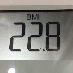 体幹リセットダイエット47日目のBMI