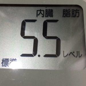 体幹リセットダイエット48日目の内臓脂肪