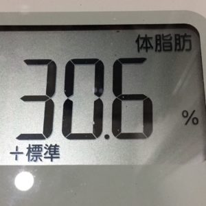 体幹リセットダイエット49日目の体脂肪