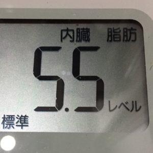 体幹リセットダイエット49日目の内臓脂肪