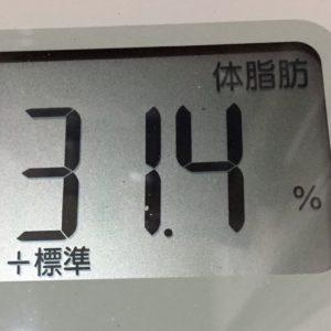 体幹リセットダイエット50日目の体脂肪
