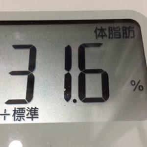 体幹リセットダイエット51日目の体脂肪