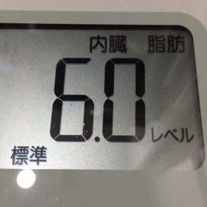 体幹リセットダイエット51日目の内臓脂肪