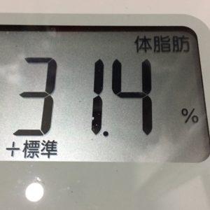 体幹リセットダイエット53日目の体脂肪