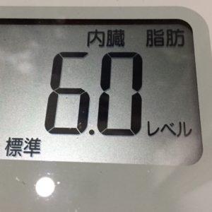体幹リセットダイエット53日目の内臓脂肪