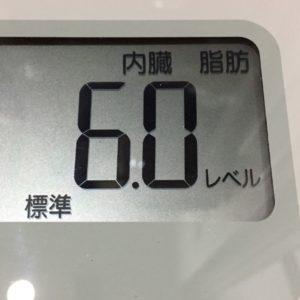 体幹リセットダイエット55日目の内臓脂肪