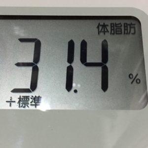体幹リセットダイエット57日目の体脂肪