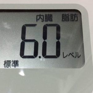 体幹リセットダイエット57日目の内臓脂肪