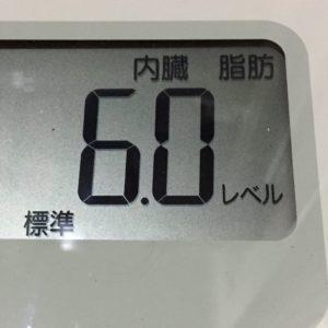 体幹リセットダイエット58日目の内臓脂肪