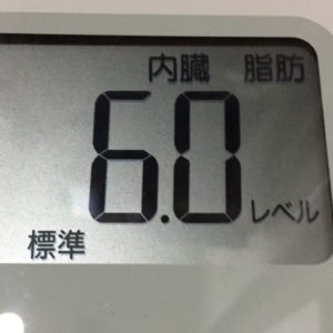 体幹リセットダイエット59日目の内臓脂肪