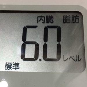 体幹リセットダイエット60日目の内臓脂肪