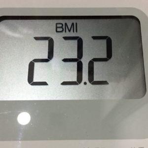 体幹リセットダイエット61日目のBMI