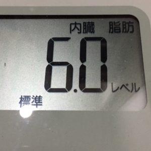 体幹リセットダイエット63日目の内臓脂肪