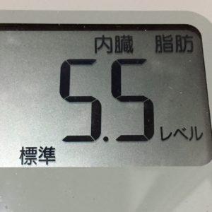 体幹リセットダイエット66日目の内臓脂肪
