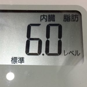 体幹リセットダイエット67日目の内臓脂肪