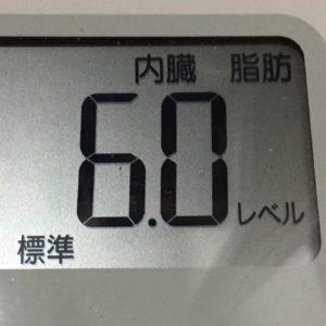 体幹リセットダイエット68日目の内臓脂肪