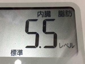 体幹リセットダイエット78日目の内臓脂肪