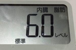 体幹リセットダイエット91日目の内臓脂肪