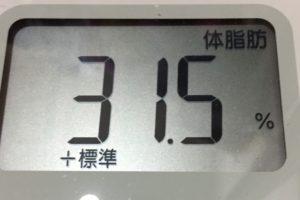 1ヶ月健康ダイエット23日目の体脂肪