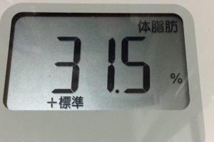 痩せるまでダイエット33日目の体脂肪