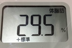 痩せるまでダイエット120日目の体脂肪